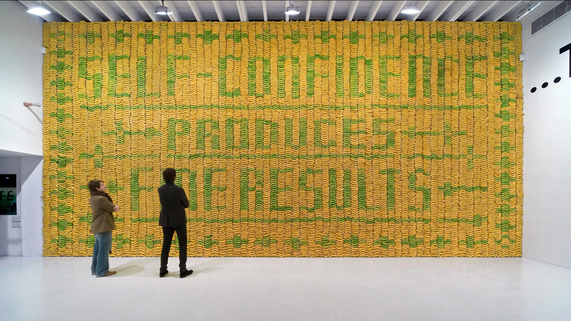 Deitch Projects, Banana Wall – Sagmeister & Walsh